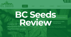 BC Seeds Reviews