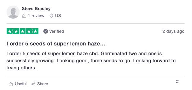 crop king seeds customer reviews