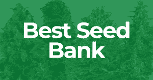 most reputable seed banks that ship to the US